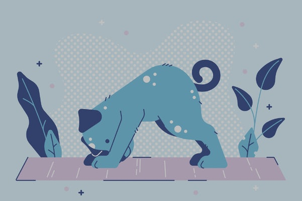 Illustration of dog doing a downward yoga