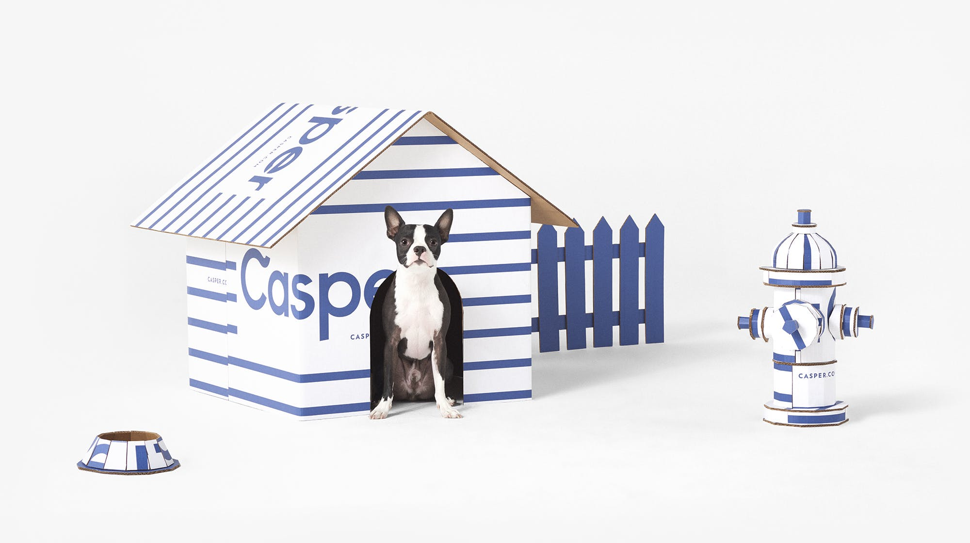 Dog in Casper Dog house