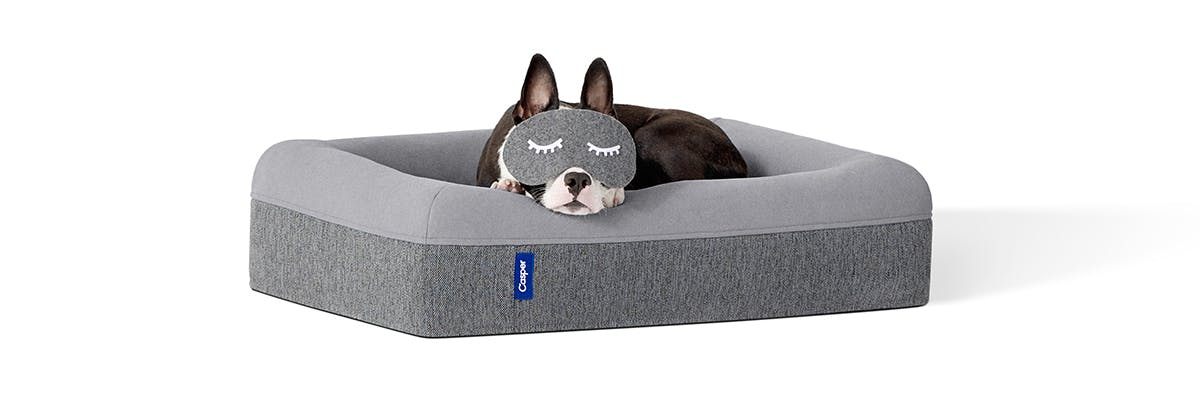 Dog mattress module