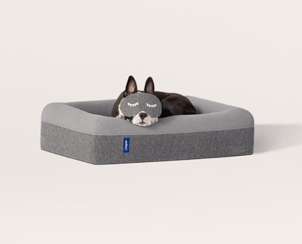 Le lit pour chien