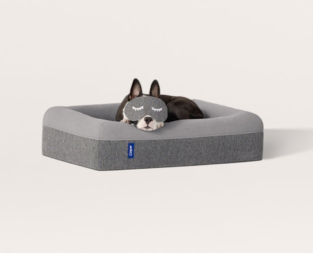Dog Bed for furry dreams
