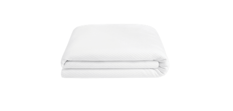 The Mattress Protector