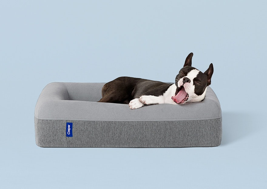 Dog Bed, Starting at ~~$125~~